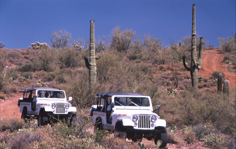 Tucson Guided Tours